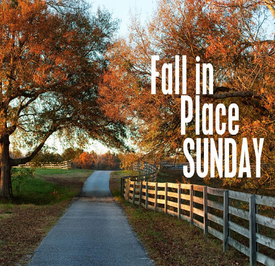 fall-in-place-sunday